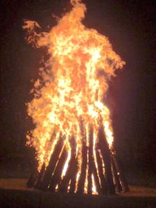 feu bonfin