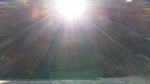 light Thania