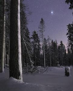 Sky starry